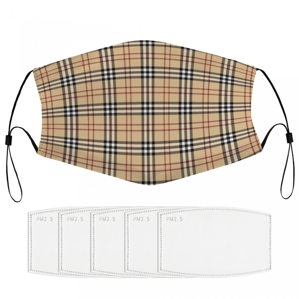 Plaid Texture Face Mask + Filters PM2.5